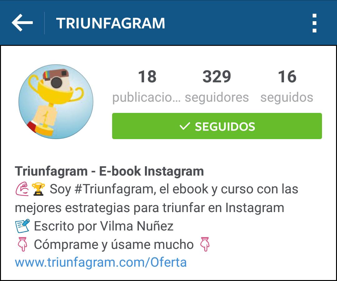 triunfagram-perfil-instagram